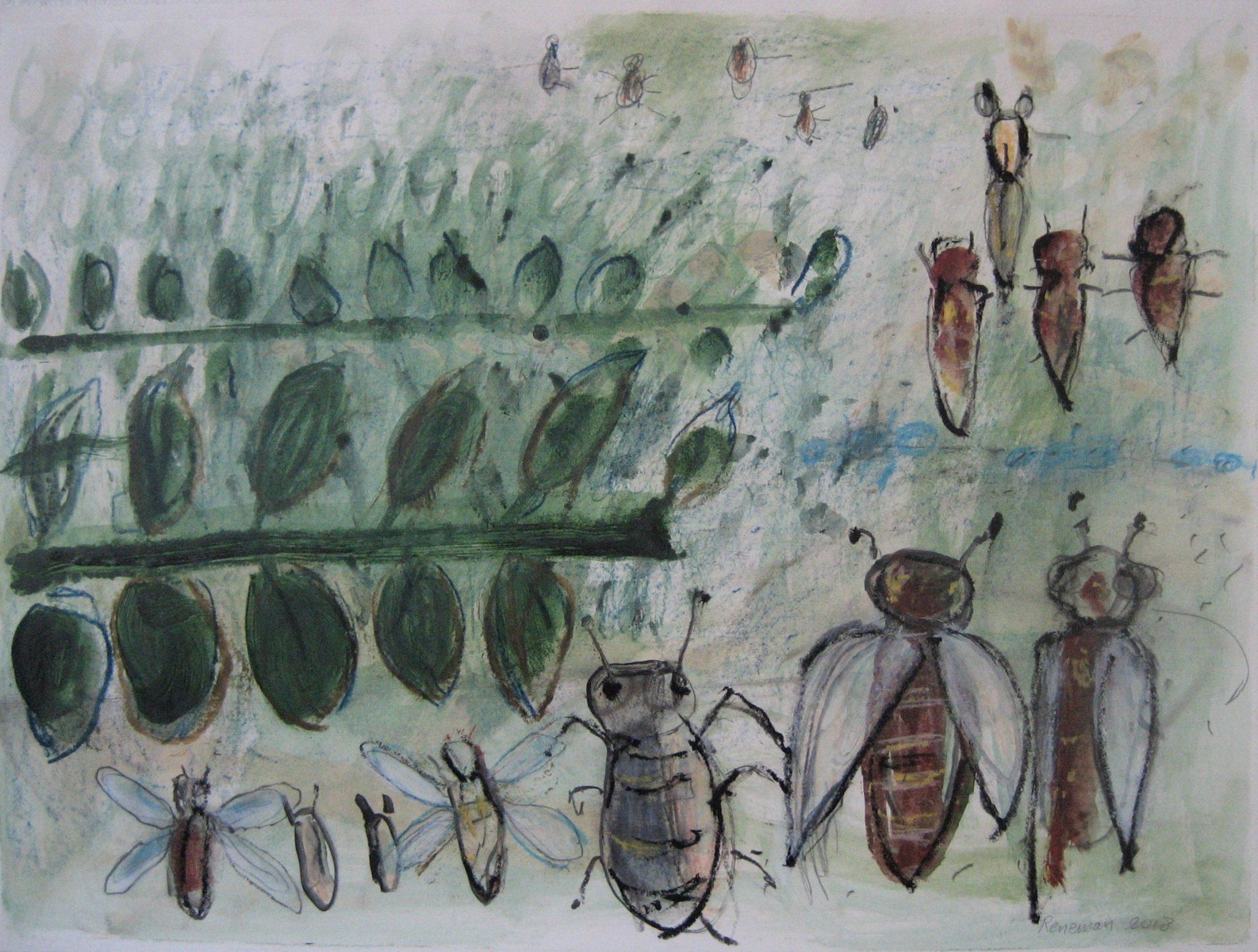 Er komen steeds minder insecten....